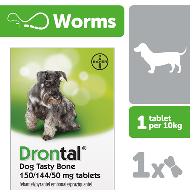 Drontal Dog Tasty Bone (Single & Multibuy)