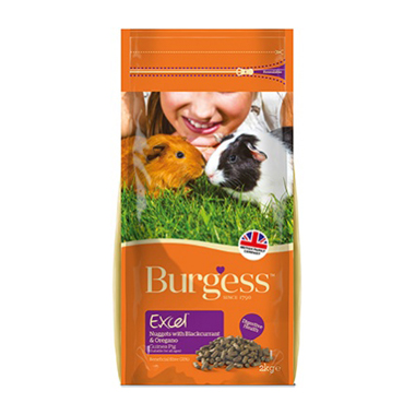 Excel Tasty Nuggets For Guinea Pigs - Blackcurrant and Oregano