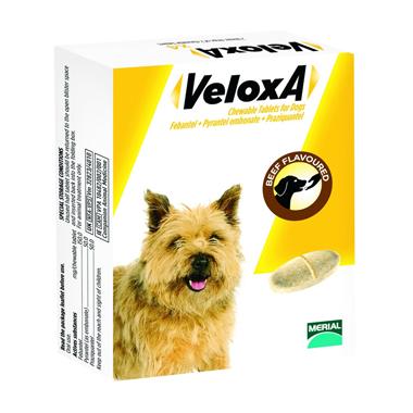 Veloxa Chewable Dog Wormer