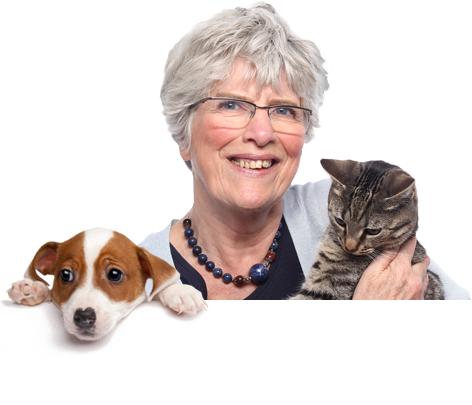 Pet Drugs Online Prescription products