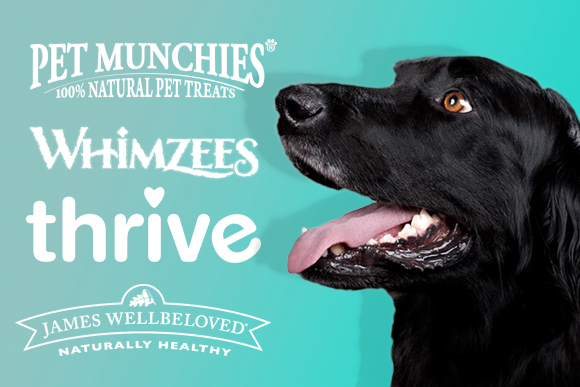 Treats, for dogs, for cats, for life