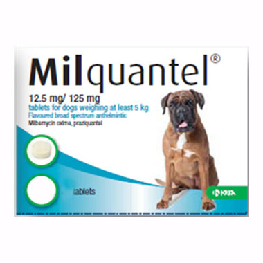 Milquantel Adult Dog
