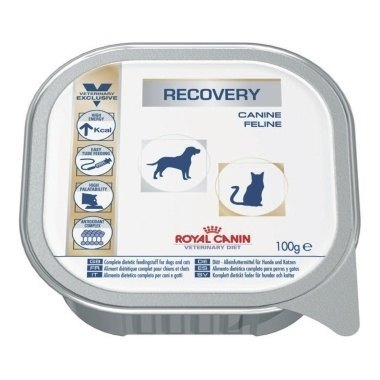Royal Canin Veterinary Diet Recovery Canine/Feline