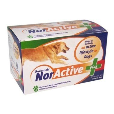 NorActive Plus Sachets