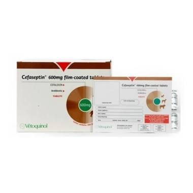 Cefaseptin Tablets 120mg