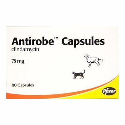 Antirobe Capsules 75mg