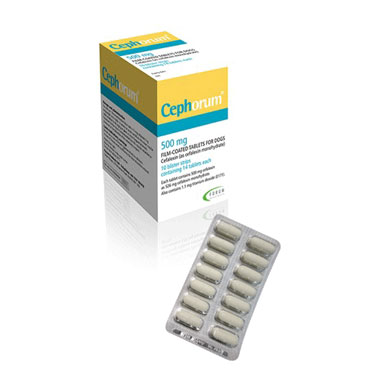 Cephorum Tablets 500mg