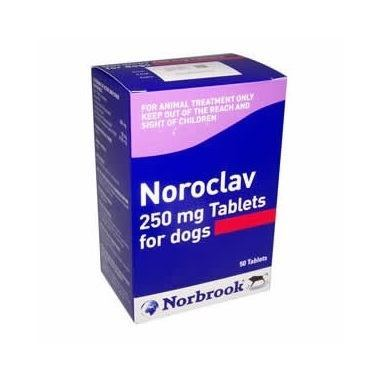 Noroclav Tablets 250mg