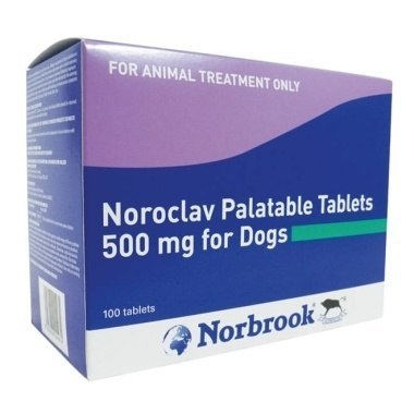 Noroclav Tablets 500mg