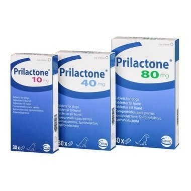 Prilactone Tablets 80mg