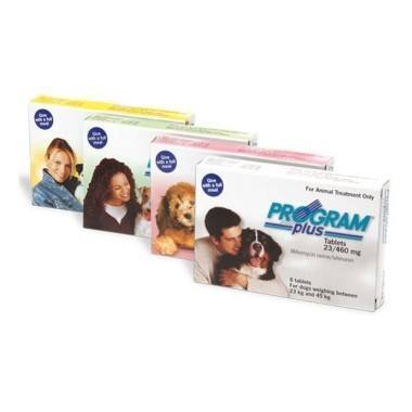 Program Plus Tablets Medium Dog