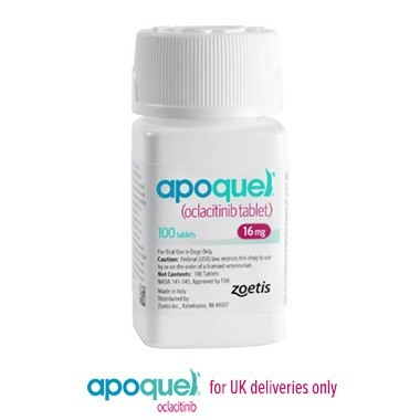 Apoquel 16mg - Short Dated Stock - AVAIL FOR PHONE ORDERS ONLY