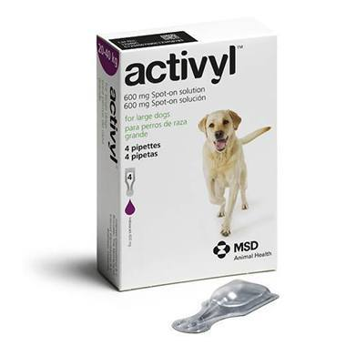 Activyl Spot On Large Dog (20-40kg)