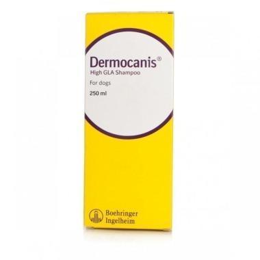 Dermocanis High GLA Shampoo