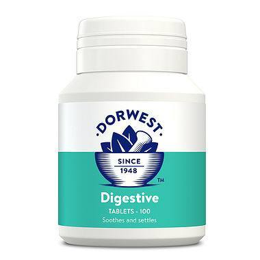 Dorwest Digestive Supplement Tablets