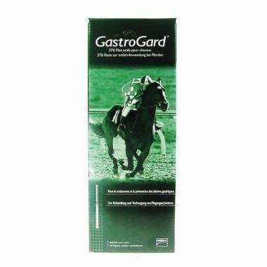 GastroGard 37% Oral Paste for Horses