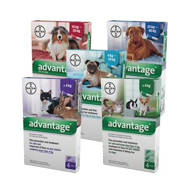 Advantage Flea Treatment Pet Drugs Online