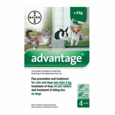 Advantage  For Small Dogs Reviews