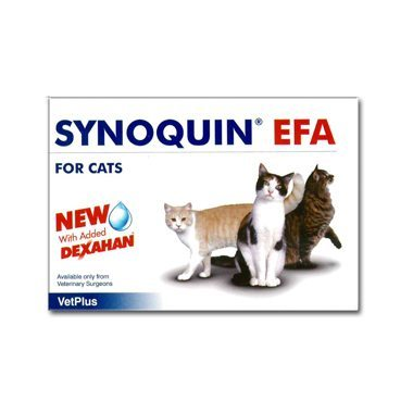 Synoquin Cat