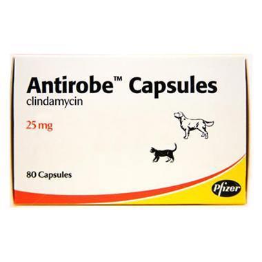 Antirobe Capsules 25mg