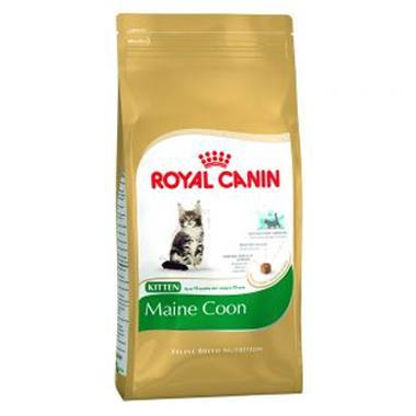 Royal Canin Breed Health Nutrition Maine Coon Kitten