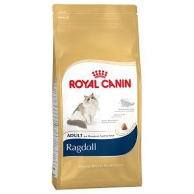 Royal Canin Breed Health Nutrition Ragdoll