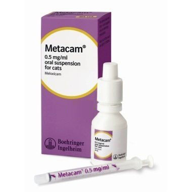Metacam Oral Suspension for Cats