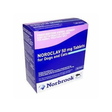 Noroclav Tablets 50mg